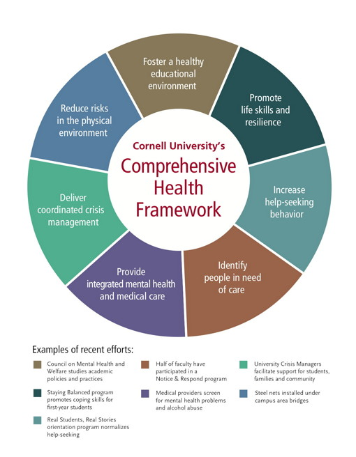 national plan for school improvement pdf assessment and reporting