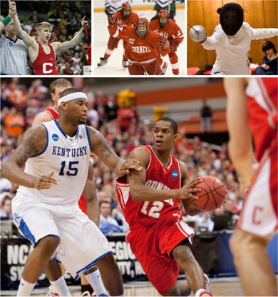 Cornell Big Red season wrap-up